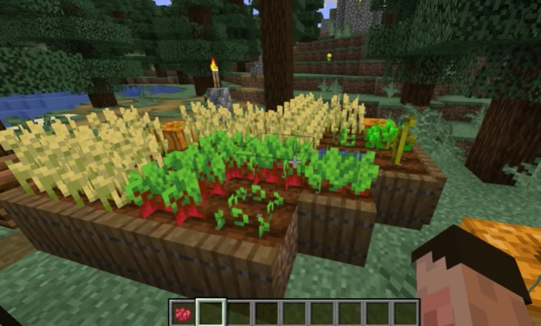 colors in minecraft